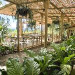 The outdoor restaurant