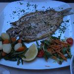 The delicious lake whitefish (of the day)