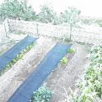 Área de Cultivo