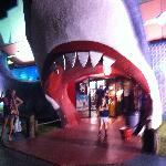 Going into the shark's mouth
