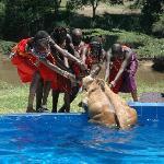 Masai rescuing Namnak