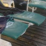 The pool chairs