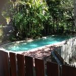 Private Pool (Picnic Creek Cabin)