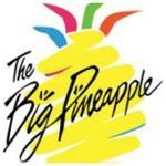 The Big Pineapple logo.