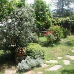 The garden/breakfast area
