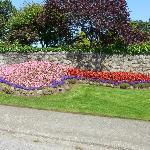 A random Victoria garden