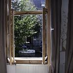 Blick aus dem Jasmine room
