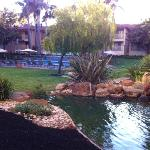 The courtyard garden area with pool, jacuzzi, koi pond, waterfall.