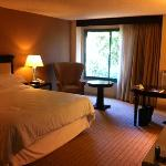 The spacious room with king size bed, workstation, cabled flat screen TV.