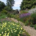 tuin in de omgeving