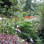 nog een tuin in de omgeving