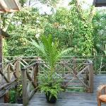 Punta Rica Villa