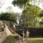 Uncover Maya culture and surrounding ruins.