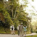 Explore Belize through our endless adventures: birding, hiking, and more!