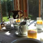 ottima colazione vista giardino