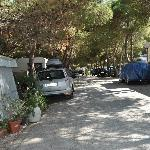 Photo of Camping Village La Pineta