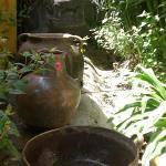 giardino/vasellami