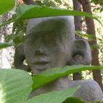 dettaglio giardino tropicale
