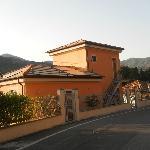 La Gerbera Foto