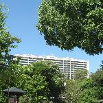 Hotel from Eduardo Park