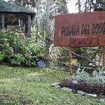 Photo of Posada del Bosque Carilo