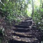camino a la cascada