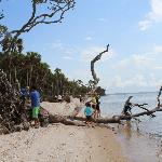 Excursions to pristine barrier islands