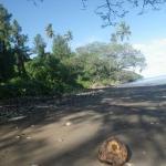 Daku's beach