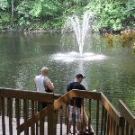 Fountain, deck