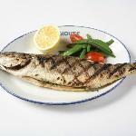 Siberian fish
