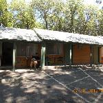 Cedar Lodge Motel Foto