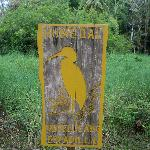 wetland conservation area - humedal