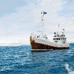 NUMI - Oak Boat