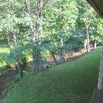 Looking right off the balcony showing more of the creek