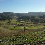 Castelfalfi Golf