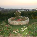 Uno scorcio di giardino al tramonto