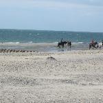 Paardrijden op het strand.