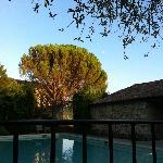 vue piscine depuis la table