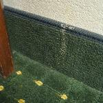 food stain running down wall & onto carpet edge