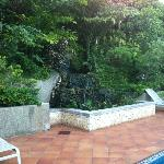 The waterfall/pond next to the pool.