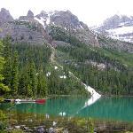 Lake O'Hara Hiking - ALPINE HOLIDAYS