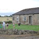Children playing opposite the cottages