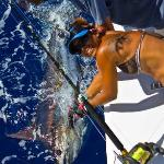 Trish helps Jacob release his first Blue Marlin