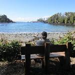 """The view from the """"Rosie"""" bench in front of Amphitrite Cottage#5."""