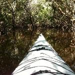 Nice view from the front of my kayak entering the trail.