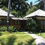 Our family suite bungalow 302