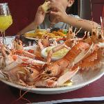 Chilled langoustines