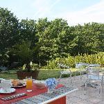 La terrasse et le parc
