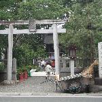 寒川神社の写真その2