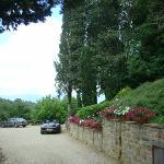 Lovely gardens at villa